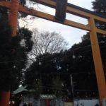 川越氷川神社 鳥居